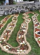 Barstyčiai siekia rekordo - Kilometro ilgio Laumės juosta iš vaisių, daržovių ir gėlių