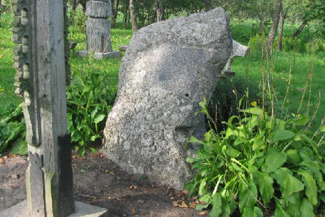 Akmuo - saugomas kaip Simono Daukanto gimtinės vietos vertingoji savybė