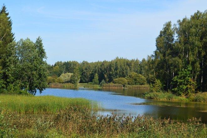 I. Navidansko parkas